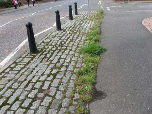 weeds breaking through the pavement in Newtongrange's Main Street